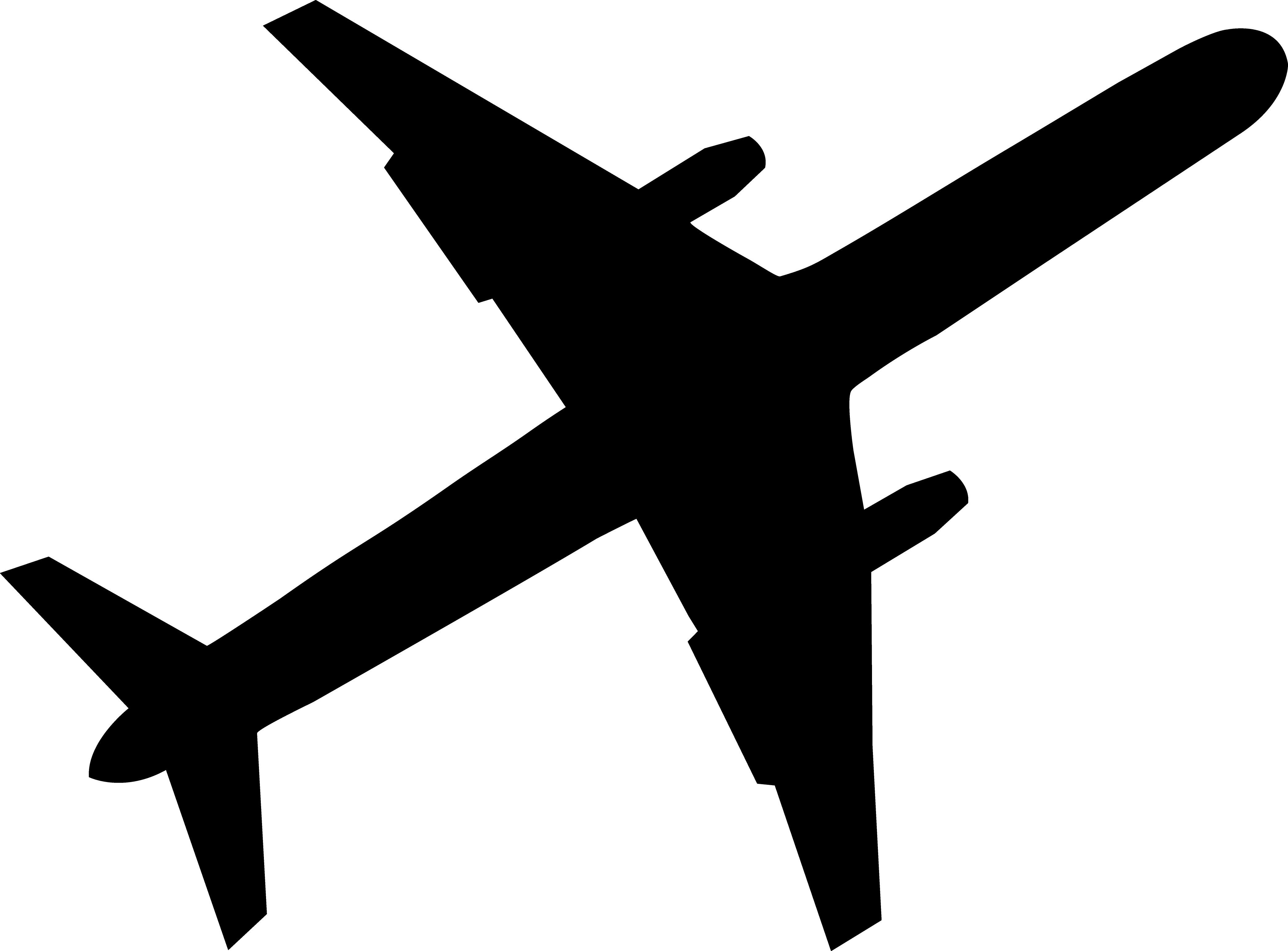 http://fatgayvegan.com/wp-content/uploads/2012/08/plane.jpg