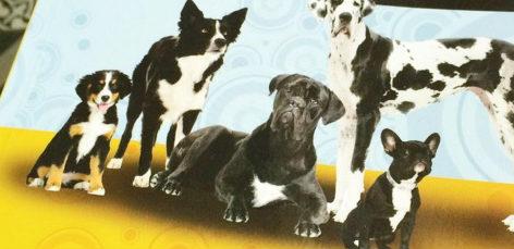 Vegan dog recipe book