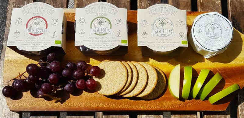 Vegan wine and cheese event in West London