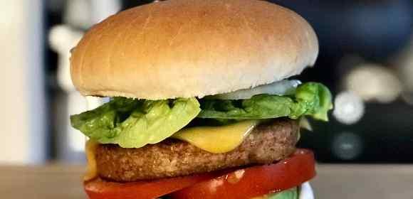 Fry's launch new vegan burger